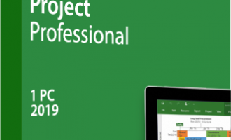 Microsoft Project 2019 官方简体中文版