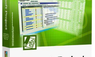 Microsoft Project 2002 官方简体中文版